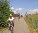 Fahrradfahren zwischen Maastricht und Amsterdam