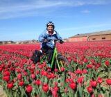 tulip bike & barge ()