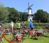 Radfahrer in Tholen