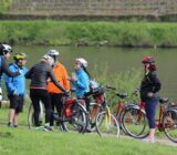 Cyclists along the Rhine