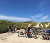 Cyclists at beach dunes