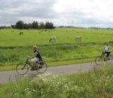 Cyclists in country side