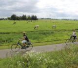 Radfahrer im Polderland