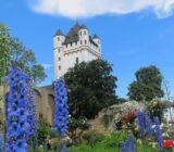 Eltville along the Rhine castle