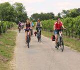 Radtour durch die Weinberge