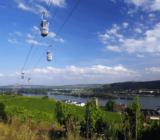 Mainz Cologne Weinberge Rüdesheim