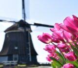 Volendam Windmühle
