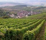 Weingebiete