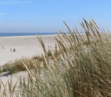Nordsee-Strand