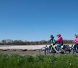 fietsers bloemenveld tulpentour