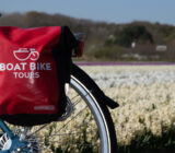 cyclist bag tulip field