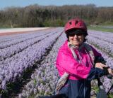 fietser tulpenveld