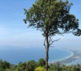 Italien Toskana Sail und Bike: Meerblick