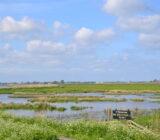 Naturschutzgebiet_it fryske gea