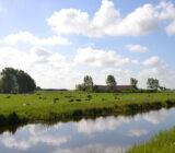 Polderland